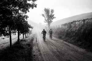 bike-trip-friends-cycling-163305.jpeg