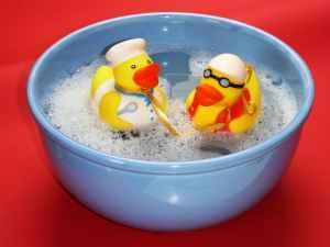 bath-splashing-ducks-joy-162587.jpeg